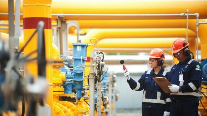 PGN Dukung Percepatan Masterplan Infrastruktur Gas Bumi Nasional