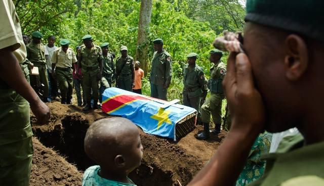 Enam Penjaga Taman Nasional di Kongo Tewas Diserang