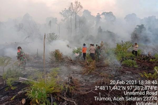107 Hektare Hutan dan Lahan di Aceh Terbakar Februari 2021, Kerugian Rp 14,9 Miliar