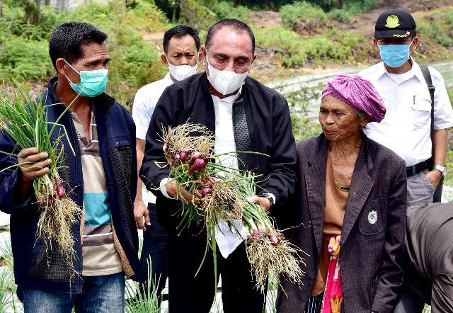 Panen Perdana, Gubsu Harapkan Food Estate Humbahas Sejahterakan Masyarakat