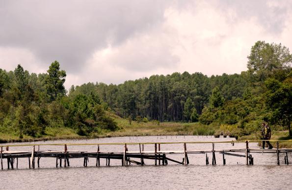 Wagub Ajak Masyarakat Lestarikan Lingkungan Danau Aek Natonang dan Danau Sidihoni