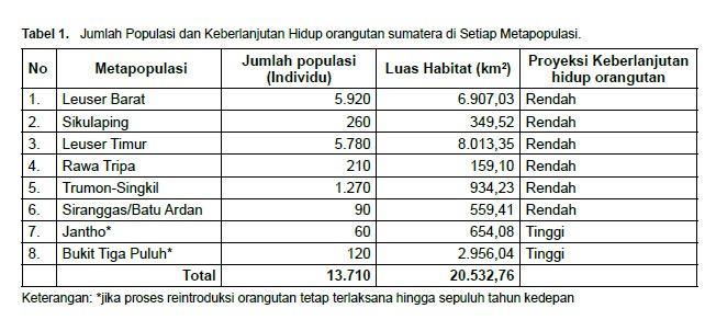 Kembalinya Orangutan Sumatera pada Hari Orangutan Internasional tahun 2021